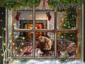 GIORDANO, CHRISTMAS ANIMALS, WEIHNACHTEN TIERE, NAVIDAD ANIMALES, paintings+++++,USGI2959,#xa#