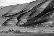 Palouse & Painted Hills