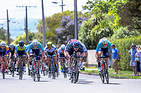 The final lap sprint to the finish line. Stage Three of the 2018 NZ Cycle Classic UCI Oceania Tour (Masterton to Martinborough) in Wairarapa, New Zealand on Friday, 19 January 2018. Photo: Dave Lintott / lintottphoto.co.nz