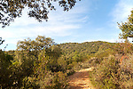 Footpath trail through Sierra Morena mountains, Sierra de Aracena, Huelva province, Spain