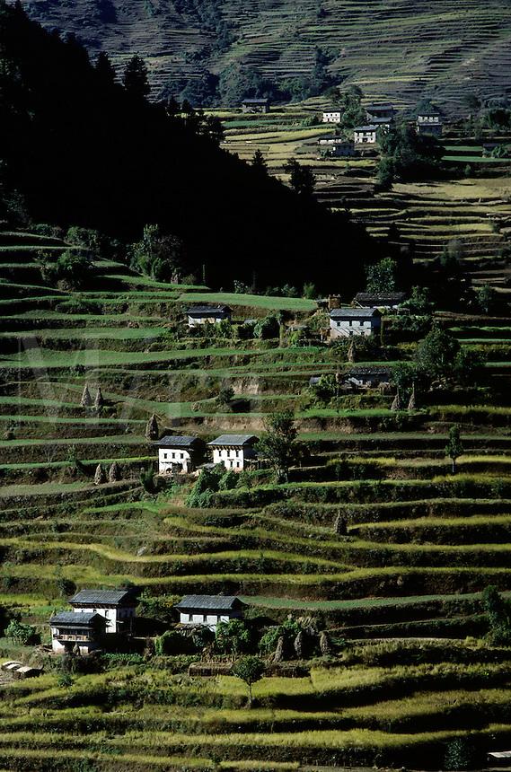 Terraced hillside with Nepali houses - SOLU REGION of NEPAL
