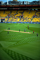 A general view of the fern mowing pattern during the One Day International cricket match between the New Zealand Black Caps and England at the Westpac Stadium in Wellington, New Zealand on Friday, 2 March 2018. Photo: Dave Lintott / lintottphoto.co.nz