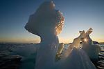 Ice drifting in Disko Bay, midnight, end of June, mid summer night; Greenland