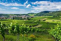 Deutschland, Rheinland-Pfalz, Suedliche Weinstrasse, Klingenmuenster: Weindorf mit Burg Landeck | Germany, Rhineland-Palatinate, Southern Wine Route, Klingenmuenster: wine village with Castle Landeck