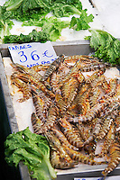On a street market. Fish market. Gambas. Thessaloniki, Macedonia, Greece