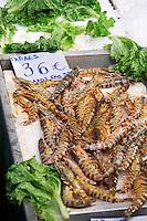 On a street market. Fish market. Gambas. Thessaloniki, Macedonia, Greece
