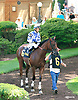 Greatbullsoffire before The Strike Your Colors Stakes at Delaware Park on 8/4/16
