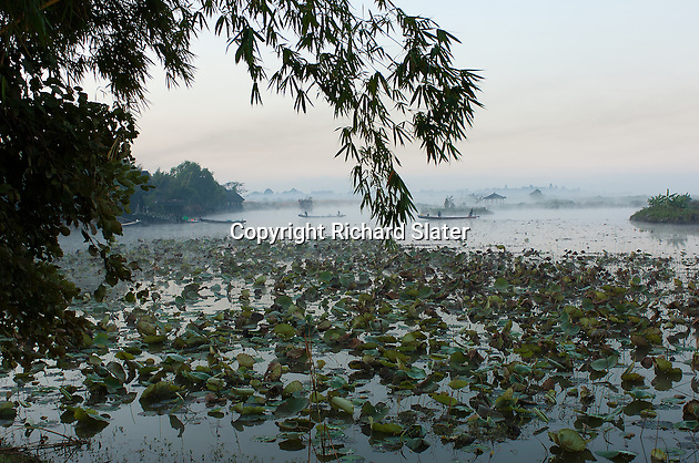 In a pre-sunrise scene, a typical early morning ground mist hides the mountains which surround Inle Lake, Myanmar, but several of the flat bottomed skiffs which the local Intha people use on the lake can be seen being paddled gently across the channel that has been cleared through the water-hyacinths which grow everywhere on the lake.