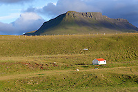 Naturlandschaft im Norden von Island, Countryside scenery in North Iceland