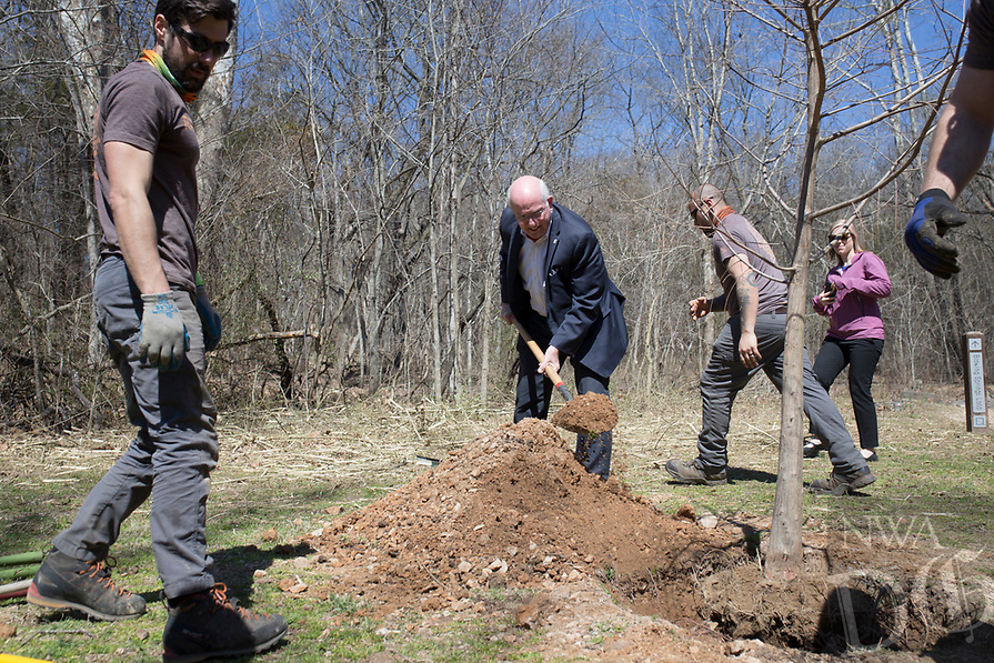 NWA Democrat-Gazette/CHARLIE KAIJO Bella Vista Mayor Peter Christie (center right) plants a Bald Cypress tree during an Arbor Day celebration, Monday, March 18, 2019 at Blowing Springs Park in Bella Vista. <br /><br />Mayor Peter Christie gave a proclamation in celebration of Arbor Day followed by a tree planting ceremony and soft opening of the Bella Vista POA's Blowing Springs Arboretum.<br /><br />The Arkansas Forestry Commission provided a Bald Cypress in recognition of Bella Vista as a Tree City USA community. The city will plant 25 native trees species in the arboretum in the next couple weeks.