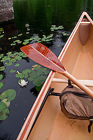 Water lily and canoe at Craig Lake State Park near Michigamme Michigan.