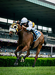 JUNE 06: Amade with Flavien Prat up wins The Belmont Gold Cup at Belmont Park in Elmont, New York on June 06, 2019. Evers/Eclipse Sportswire/CSM
