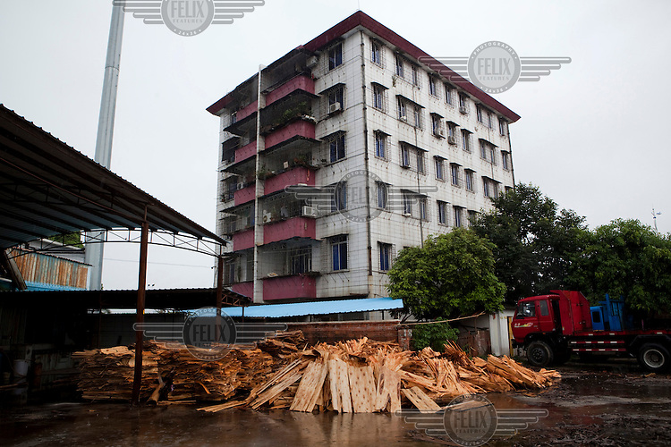 A Weishang Wood building, a customer of the neighboring Sino-Panel factory, which processes eucalyptus timber in Gaoyao, Southern China.