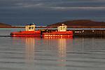 TUG BOATS ON THE ARCTIC OCEAN, CORONATION BAY