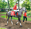 Ruby AA before The Delaware Park Arabian Oaks (grade II) at Delaware Park on 8/6/16