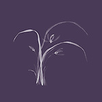 Beautiful simple floral Japanese Zen ink painting artwork design of flowers of wild orchids with leaves illustration on light gray background