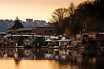 Lake Union Boat Houses