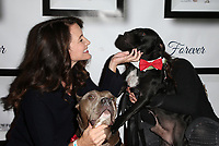 HOLLYWOOD, CA - NOVEMBER 5: Kristin Davis, Rebecca Corry, at 7th Annual Stand Up For Pits at Avalon Hollywood In Hollywood, California on November 5, 2017. <br /> CAP/MPI/FS<br /> &copy;FS/MPI/Capital Pictures