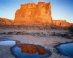 Arches National Park, UT<br /> The Organ stands in morning sun with reflections in vernal slickrock pools near Courthouse Wash