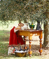 A table laid with bread and refreshments for an evening meal in the olive grove