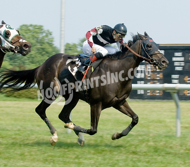 Going to Market winning at Delaware Park on 6/28/12