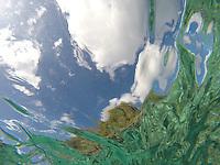 Water Agua H2O