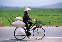 Vietnamese woman in coolie conical hat riding bicycle ladden with bags, Hanoi, Vietnam