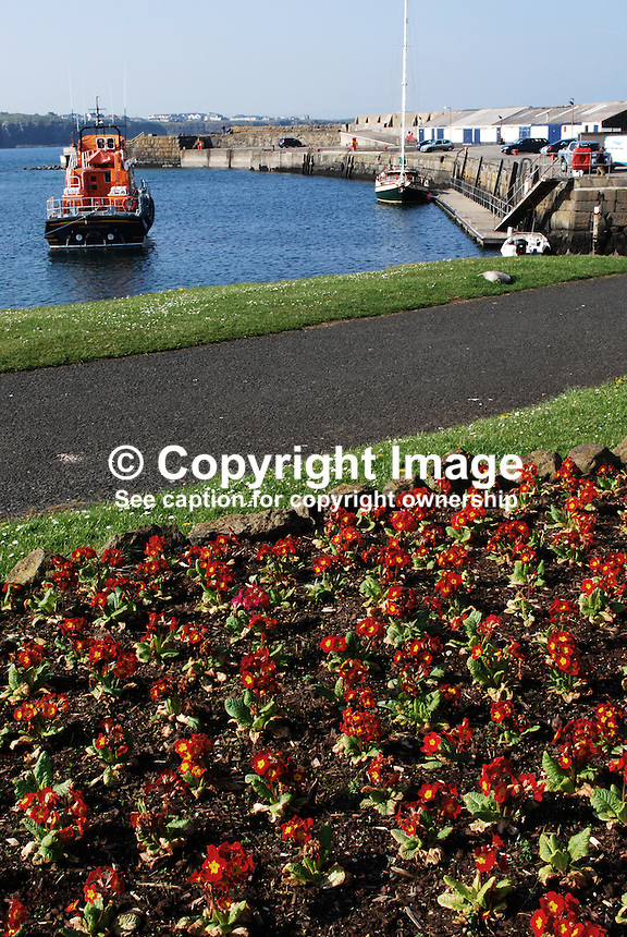 Harbour, Portrush, Co Antrim, N Ireland, UK, 200904192101..Copyright Image from Victor Patterson, 54 Dorchester Park, Belfast, UK, BT9 6RJ..Tel: +44 28 9066 1296.Mob: +44 7802 353836.Voicemail +44 20 8816 7153.Skype: victorpattersonbelfast.Email: victorpatterson@mac.com.Email: victorpatterson@ireland.com (back-up)..IMPORTANT: If you wish to use this image or any other of my images please go to www.victorpatterson.com and click on the Terms & Conditions. Then contact me by email or phone with the reference number(s) of the image(s) concerned.