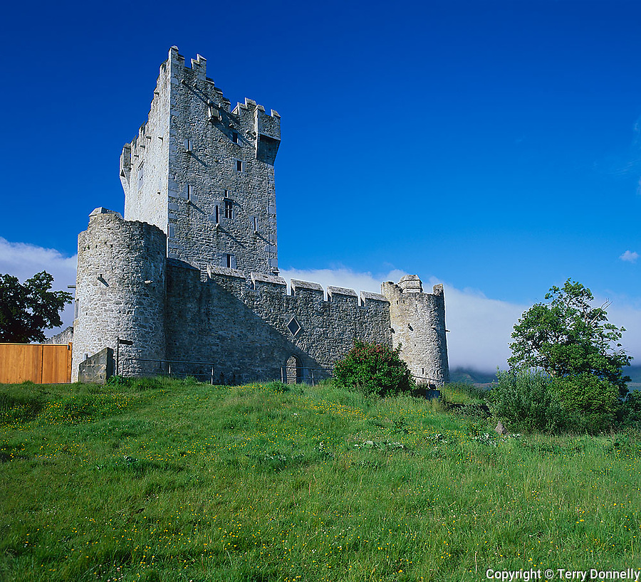 County Kerry, Killarney National Park, Ring of Kerry, Ireland          <br /> Ross Castle tower and walls (16th Century) built on the shore of Lake Leane