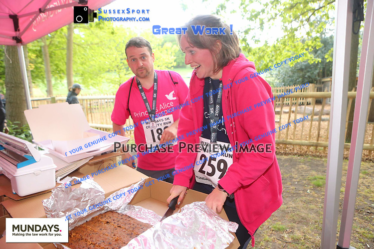 259 misc cake thief