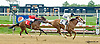Prairie Trip winning at Delaware Park on 5/25/13.