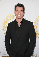 PASADENA, CA - FEBRUARY 9: Jerry O'Connell, at the Hallmark Channel and Hallmark Movies &amp; Mysteries Winter 2019 TCA at Tournament House in Pasadena, California on February 9, 2019. <br /> CAP/MPI/FS<br /> &copy;FS/MPI/Capital Pictures