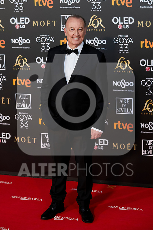 Pedro Miguel Martinez attends to 33rd Goya Awards at Fibes - Conference and Exhibition  in Seville, Spain. February 02, 2019. (ALTERPHOTOS/A. Perez Meca)
