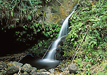 waterfall on Hana Hwy