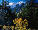 North Cascades National Park, WA: Morning light on snow covered peaks of Johannesburg Mountain at Cascade Pass