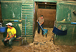 New York Post Columnist John Crudele cleans a stall while groom Louis Chele takes a break in the barn of Trainer Chuck Spina at Monmouth Park in Oceanport, New Jersey on Saturday July 9, 2016. Photo By Bill Denver/EQUI-PHOTO
