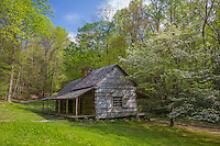 Great Smoky Mts. National Park, TN/NC<br /> Log farm house at the Noah 'Bud' Olge place on the Roaring Fork Motor trail