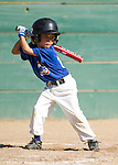 Third Round of Los Altos Little League AA tournament.  Rockies vs Cubs at Purissima Field 4, June 6, 2013