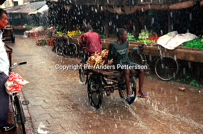dicotanz00022 .Weather. A man sitting on a bicycle cart with fruit at a vegetable market during a heavy rainfall on October 8, 2002 in Stone Town in central Zanzibar, Tanzania. Zanzibar has become a popular tourist destination due to the beautiful virgin beaches and influence of Arabic, Indian and African cultures on the Island. .©Per-Anders Pettersson/iAfrika Photos