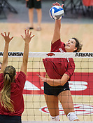 Razorback Volleyball 2018