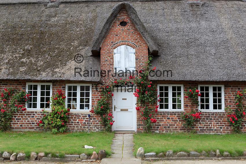 Denmark, Jutland, Møgeltønder: Traditional Danish thatched cottage | Daenemark, Juetland, Møgeltønder: traditionelles Reet gedecktes Haus
