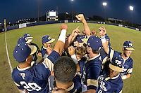 FIU Baseball 2015 (Combined)