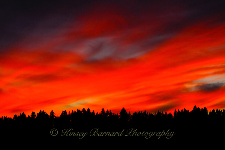 Spectacular Montana sunset the sky ablaze with color and the Kootenai Forest in silhouette