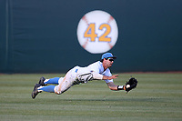 Daniel Amaral (25) of the UCLA Bruins makes a diving catch in the outfield during a game against the Arizona Wildcats at Jackie Robinson Stadium on March 19, 2017 in Los Angeles, California. UCLA defeated Arizona, 8-7. (Larry Goren/Four Seam Images)