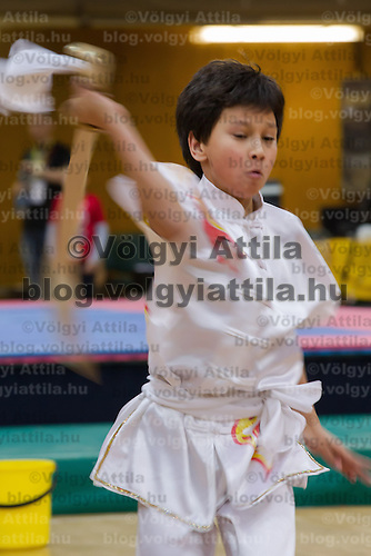 Anton Fan performs his routine during the 3rd International Chan Wu, Traditional Kung Fu and Wu Shu Championships in Budapest, Hungary on November 24, 2012. ATTILA VOLGYI