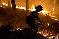 A firefighter uses a drip torch to set a controlled burn creating a safe zone around homes close to the King Fire in the town of Pollock Pines, California, USA, on 17 September 2014. Fire crews around California fight 12 major fires across the state, including the King Fire which has burned 27,930 acres (11,084 hectares), only 5% contained, and located east of Sacramento, California, USA in El Dorado County.