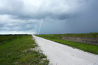 An early afternoon storm, complete with lightning and thunder, prepares to drench the Everglades. Photographed at Arthur Marshall Loxahatchee Wildlife Refuge, Boynton Beach, Florida.