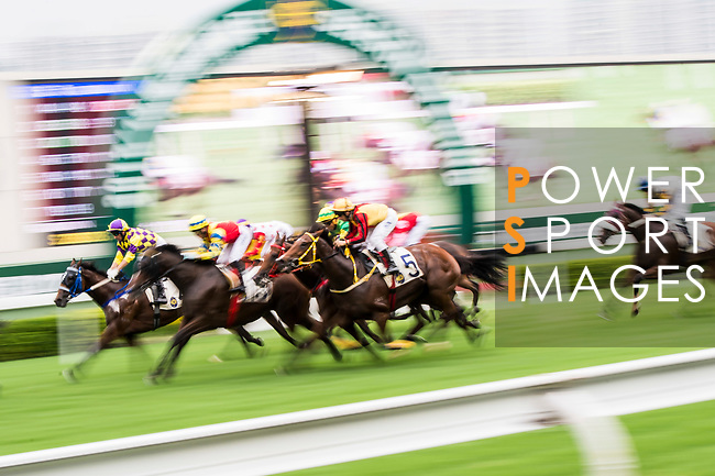 Horse Gold Talent (#5) ridden by Brett Prebble competes during the Race 5, Tim Mei Handicap, at the Sha Tin Racecourse on 03 September 2017 in Hong Kong, China. Photo by Marcio Rodrigo Machado / Power Sport Images