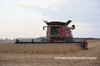 63801-07217 Soybean harvest with Case IH combine in Marion Co. IL