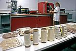 Pesquisa e desenvolvimento de algodão colorido na Embrapa. Campina Grande. Paraíba. 2002. Foto de Juca Martins.